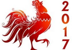chinese new year 2017 with red rooster